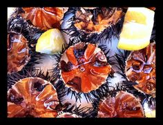 Fresh sea urchins www.chianacoronis.com