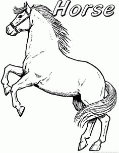 free animals horse printable coloring pages for preschool