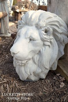 Concrete lion heads --reordered!  Great statement piece for the garden or the entrance of a home.  We carry them as plaques and as fountain heads.