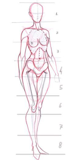 Today's Drawing Class: Drawing the Female Body   Female proportions