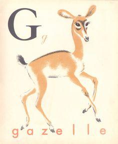 G comme Gazelle