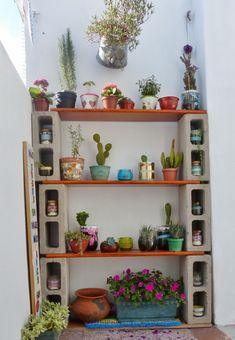 Con mi valija al hombro.: Reciclado para darle protagonismo a mis cactus, plantas y verduras.
