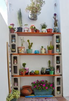 Easy to make plant shelfs