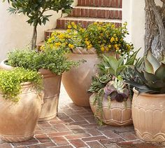 A special mix of cement and fiberglass gives these pots the warmth of hand-thrown terra cotta but with less weight and greater frost-resistance. Placed indoors or out in the garden, they work equally well as cachepots or direct planters. Metal Planters, Outdoor Planters, Concrete Planters, Outdoor Gardens, Planter Pots, Cement, Ceramic Planters, Succulent Arrangements, Succulents