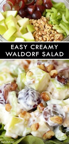 15 minutes · Vegetarian Gluten free · Serves 8 · This Creamy Waldorf Salad has apples, grapes, celery, walnuts, and a wonderful sweet dressing. Serve in bowls or on Bibb lettuce. Apple Salad Recipes, Healthy Recipes, Apple Grape Salad Recipe, Apple Celery Salad, Lettuce Salad Recipes, Healthy Dishes, Healthy Meals, Apple Walnut Salad, Best Nutrition Food