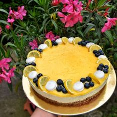 Other Recipes, Cheesecake, Birthday Cake, Mousse, Sweets, Desserts, Cakes, Amelia, Food