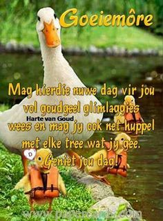 Good Morning Greetings, Good Morning Wishes, Afrikaanse Quotes, Goeie More, Morning Images, Stand Up, Growing Up, Qoutes, Wees
