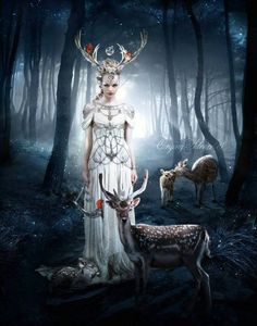 Goddess Diana the Huntress. Mate to the White Stag. The deer is linked to the arts, specifically poetry and music in ancient Celtic animal lore due to its graceful form. The Celts also believed that deer were associated with the fairie realm, and would lead troops of fairies - hundreds of them trailing behind them as the stag cut a path through the forest. Both Celts and Native Americans observed the deer to be savvy when it came to finding the best herbs. These earth-bound peoples would…