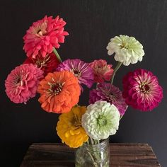 Flower Magazine - 12 Zinnia Flower Arrangements We Love: From simple handpicked bouquets to artistic masterpieces, the… - View Zinnia Bouquet, Flower Bouquets, Happy Flowers, Love Flowers, Beautiful Flowers, Flowers Vase, Autumn Flowers, Colorful Flowers, Easiest Flowers To Grow