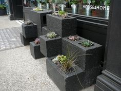 Cinder Block Planter Ideas | Nice creative idea I also like the tin buckets in the window we could drill holes in bottoms.