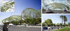 Urban Artscape in Middle East - Fenwick Iribarren Architects _ Middle East
