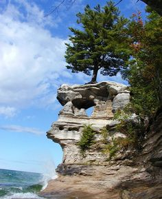 Lake Superior Michigan where trees grow on rocks