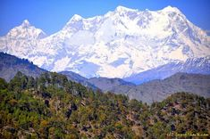 Rishikesh, Uttarakhand: Short treks to temple, explore Shivanandi village, go rafting or kayaking, nourish your body with Yoga and Haridwar, Forest Trail, Dehradun, India Tour, Rishikesh, Rustic Cottage, Lush Green, Stargazing, Rafting