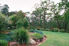 Native Australian Gardens - Google Search