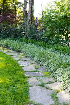Edging this front lawn beside the street is a fieldstone path with carex, boxwood, and American beech forming a privacy hedge to hide the road.