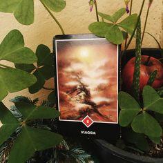 """Tarô Zen de Osho - Significado da carta Viagem - Projeto Meu Corpo Meu Templo (@projetomeucorpomeutemplo) no Instagram: """"🌱 #Conselho da semana: Essa #carta pode ser interpretada no sentido literal da palavra, afinal,…"""""""