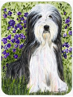 Features:  -Bearded Collie collection.  -Made of tempered glass with design on the back of the cutting board.  -Heat resistant, non skid feet, and virtually unbreakable.  -Protect your counter top.  -