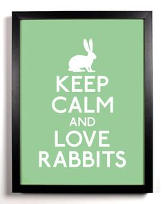 I cant keep calm.but I do love rabbits! Funny Bunnies, Cute Bunny, Keep Calm And Love, My Love, Somebunny Loves You, Bunny Care, Keep Calm Posters, Angora Rabbit, House Rabbit