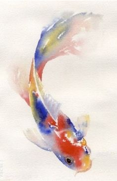 Watercolor koi fish