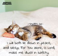 I will both lay me down in peace, and sleep: for thou, LORD, only makest me dwell in safety.  Psalms 4:8