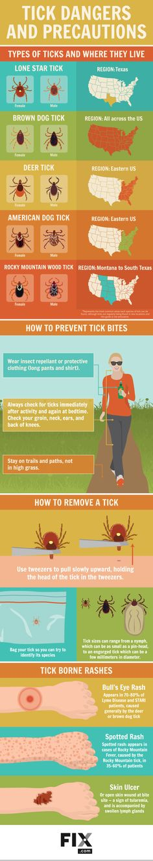 Tick Dangers and Precautions #infographic #Animals