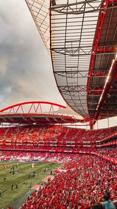 Stadium Wallpaper, Football Wallpaper, Football Love, Football Is Life, Julian Weigl, Liverpool, Benfica Wallpaper, Sc Internacional, Sports Wallpapers