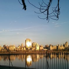 Central Park on a wonderful day. New York City. Photo ©Dinorah Matias.