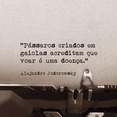 """""""Pássaros criados em gaiolas acreditam que voar é uma doença."""" -Alejandro Jodorowsky"""