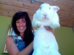 <b>These bunnies are big as hell.</b> And they're not sorry.