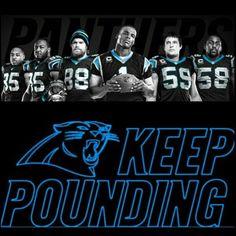 25 Carolina Panthers Quotes
