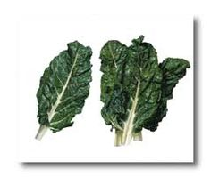 Chard - Vegetable Directory - Watch Your Garden Grow - University of Illinois Extension