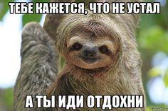 """Как говорил тот рекламный персонаж """"Я опечаленъ!"""" :((  Я опечален каждый раз, когда признанные эксперты говорят, какую-то (зачёркнуто), гм, нечто странное... http://lnk.al/2Y0K #таймменеджмент  А вот и цитата из ЖЖ Глеба Архангельского:  """"Симптомы стратегической усталости: «Просыпаюсь утром – жить не хочется»; «продать бы бизнес и отдохнуть годик-другой на Гоа»; «от семьи тошнит»; «пора валить» и т.д. Вплоть до «сожгу осиное гнездо» - сквозь зубы, проходя по собственному офису… - видели мы и…"""