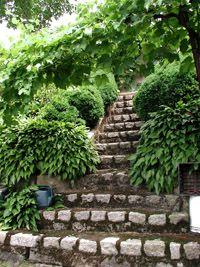 More fabulous steps
