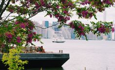 East River and Manhattan Skyline, New York City