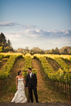 Wine Country Wedding by Zach Anderson Photography