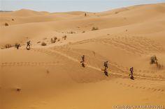 The world's toughest race: Marathon des Sables. I have achieved this!
