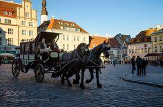 Chariot in Tallinn by PauliusMalinovskis