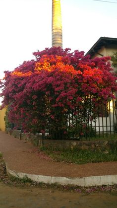 SantaRita #Paraguay #beautiful