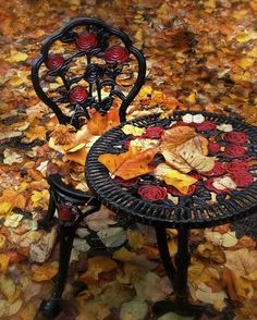 Wrought iron rose chair and table
