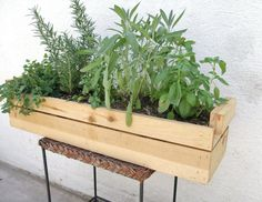 herb garden- use stamp kit to stamp what everything is on the wood