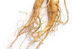 Lo zenzero, ginger, è il rizoma di una pianta che fa parte della famiglia del cardamomo, una spezia utilizzata per curare il raffreddore e i...