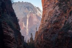 Zion National Park Utah. [OC] [2048x1365]