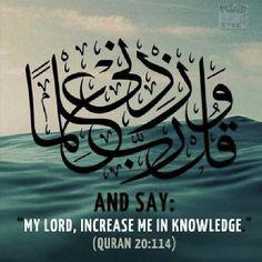 Qur'an - seeking knowledge