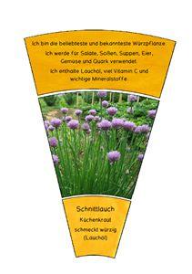 FREE: Kräuter-Legekreis