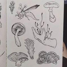 Mushroom tattoos, In Mushroom Drawing, Mushroom Art, Art Drawings Sketches, Tattoo Drawings, Artwork Drawings, Tattoo Studio, Kunst Tattoos, Art Tattoos, Tattoo Ink