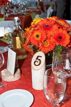 Birch table numbers, Rustic wedding