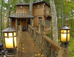My Treehouse