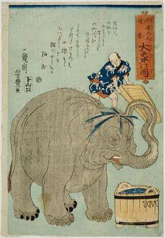 Great Elephant / Yoshitoyo