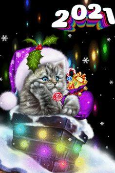Happy New Year Fireworks, Happy New Year Wallpaper, Happy New Year Message, Happy New Year Wishes, Happy New Year Greetings, Happy New Year 2019, New Years Eve Pictures, Happy New Year Pictures, Christmas Kitten