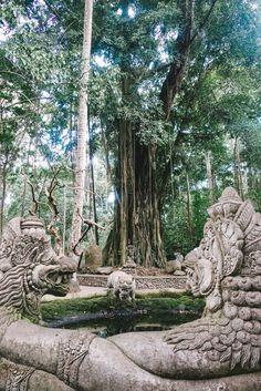The Sacred Monkey Forrest. - Ubud, Bali - The Londoner